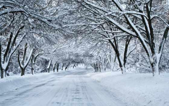 winter, дорога, природа, снег, trees, landscape, заснеженная, уходящая, вдаль,