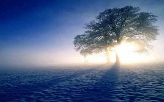 природа, winter, пейзажи -