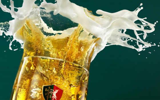 пиво, пенка, брызги, glass