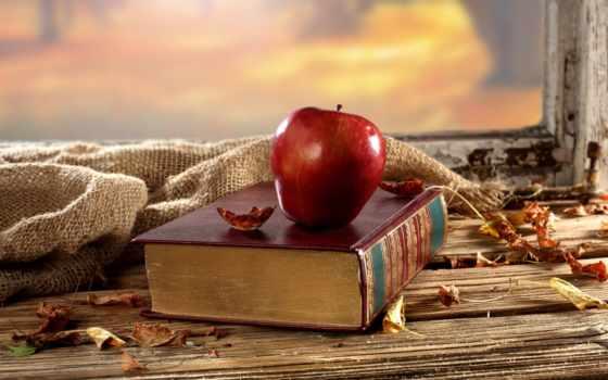осень, натюрморт, настроение, книга, завораживающий, цена