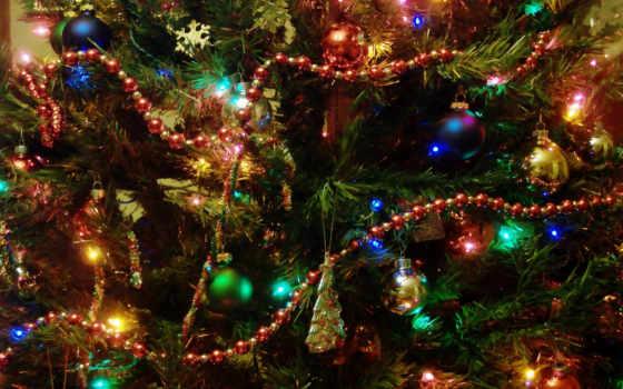 новогодняя, елка, елку, елки,