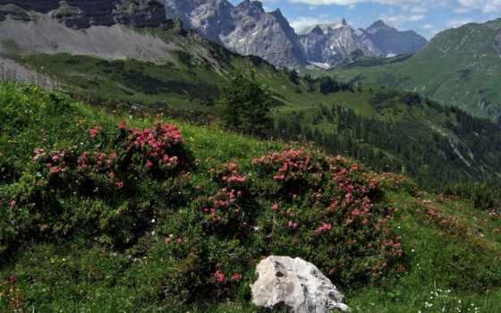 горные, красоты, free, австрия, февр, desktop, горы,