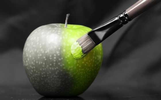 чёрно, зелёный, white, плод, apple, разное, кисточка,