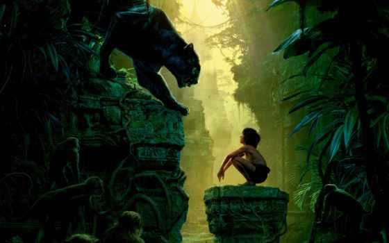 джунглей, jungle, книга, online, смотреть, сниматься, хорошем,