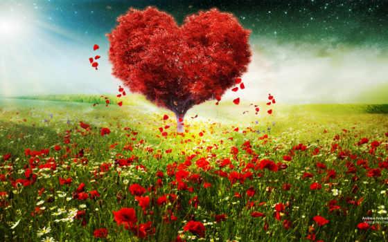 love, desktop, день, resolutions, закат,