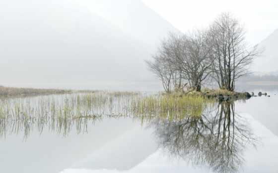 туман, озеро, категории, trees, landscape, луна,