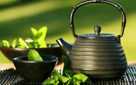 чая, coffee, property