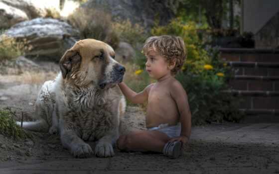 собака, boy, гвардия, children, настроение, друзья