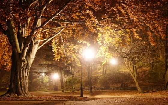 park, осень, romantic