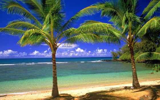 острова, гавайские, тихого