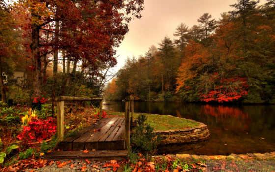 мост, осень, река, лес, wooden,