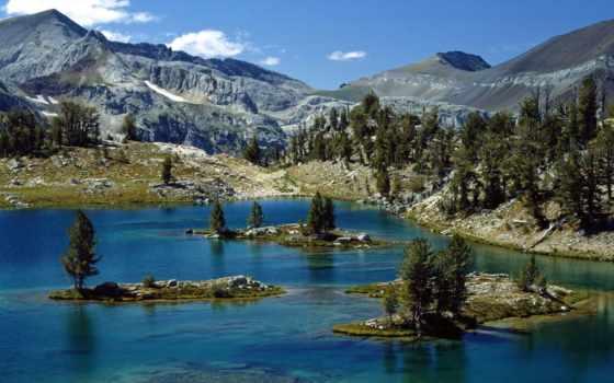 озеро, орлан, wilderness