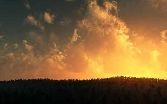 закат, лес, небо, лесом, со, красавица, природа,