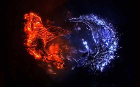 картинку, огонь