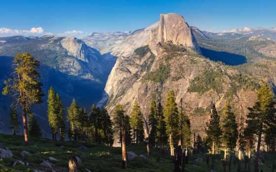 горы, утро, сосны, yosemite, природа, trees, park, half, national, dome, дерево,