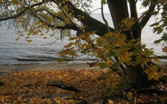 природа, осень, desktop, осенние, фото, полировка, poland, река,