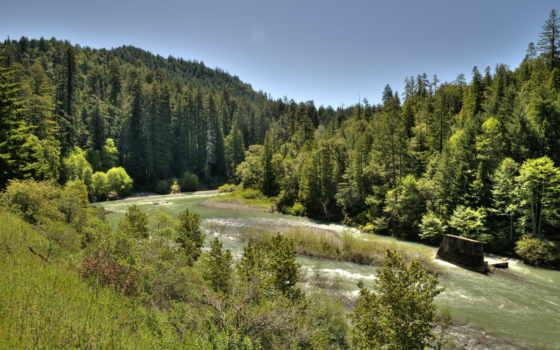 природа, горы, лес Фон № 35109 разрешение 2972x1973