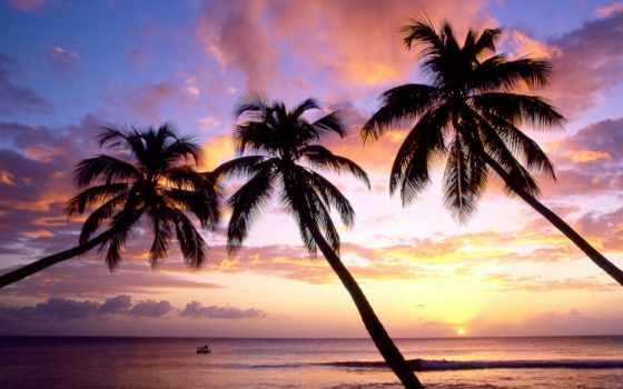 небо, пляж, free