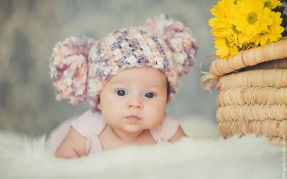 малыш, шапке, children, банка, ми, малышей, bunny, вязаной,