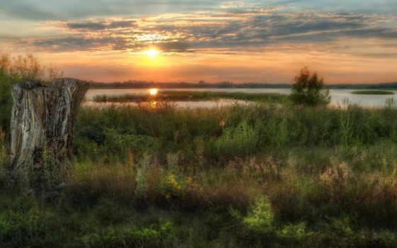 озеро, stump, sun, трава, закат, вечер, тег, grassy, природа,
