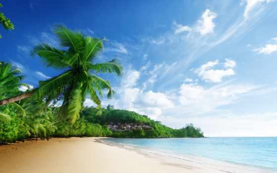 природа, море, пляж, небо, oblaka, landscape,