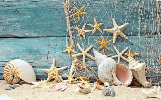 ракушки, морские, звезды, песок, seashells, starfish, marine, разное, wood, сетка,