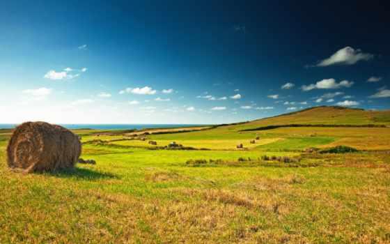 поле, landscape, зелёный, взгляд, great, деревня, луг, сено, стог, зеленое,