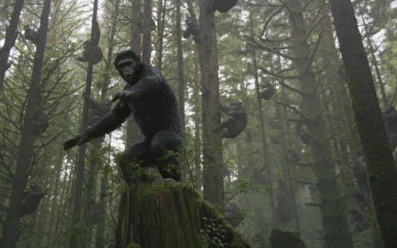 обезьян, революция, планета