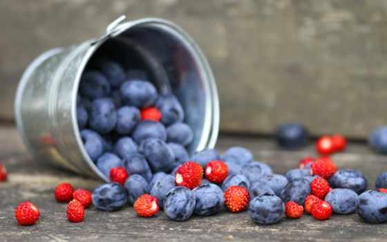 черника, eда, ягоды