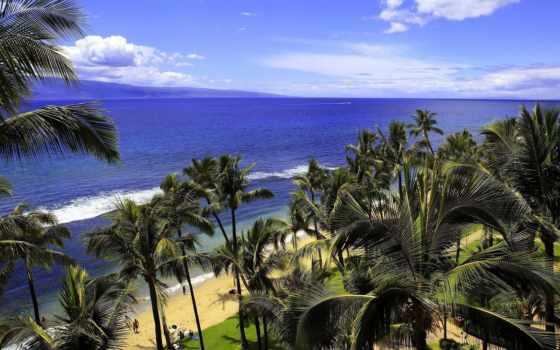 hawaii, природа, изображение, побережье, free, фото, desktop, тематика, море,