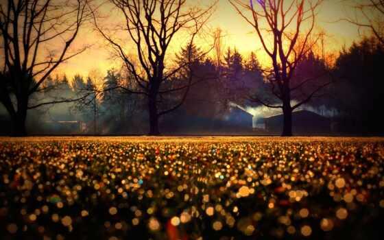 осень, природа, adsbygoogle, adsense, выложить, блог, neplohoi, compilation, house