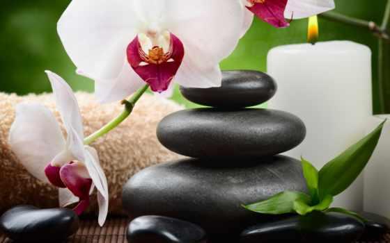 камни, орхидея, спа