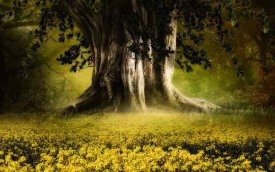 özel, indirim, summer, цветы, дерево