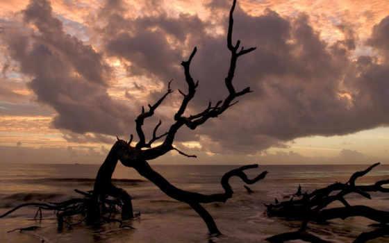 море, категории, моря, мрачные, тёмные, закат, windows,