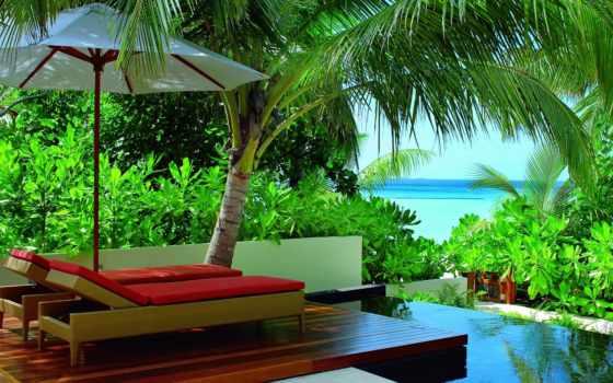 collector, bali, lovely, разные, спа, пальмы, темы, отдых, река, губы,