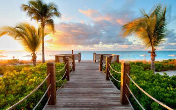 пальмы, море, desire, ocean, теркс, кайкос, мост, берег, трек,