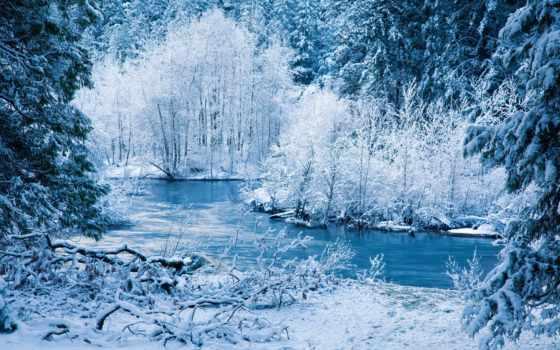 лес, коллекция, зимняя, winter, снег, картинок, desktopwallpape, сказ,