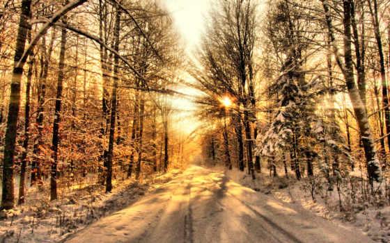 лесу, закат, winter, зимнем, лес, rays, sun, небе,