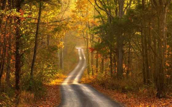 осень, landscape, дорога Фон № 57439 разрешение 1920x1080