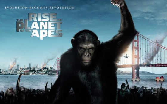 обезьян, взлёт, uprising