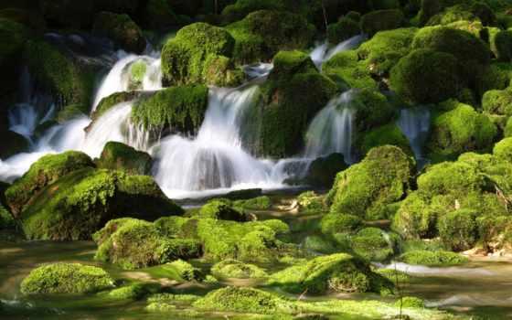 водопад, rocks, природа, mossy, water, франция, пасть, скалы, зелёный,