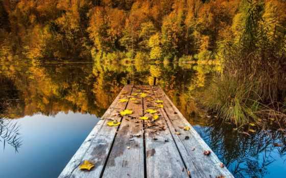 природа, озеро, листья, мост, озера,