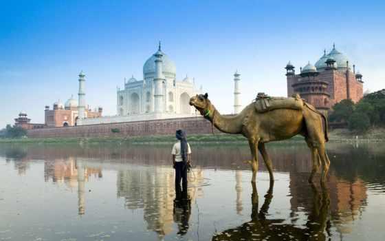 индии, города, дели