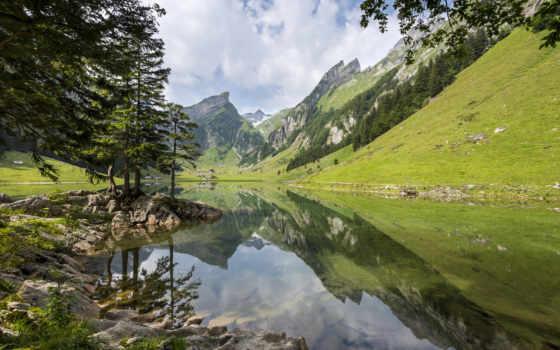горы, лес, альпы, небо, озеро, горное, дек, summer, памм, seealpsee,