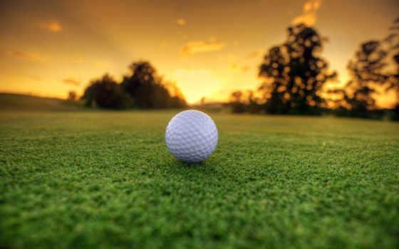 golf, мяч, tee, фон, desktop, free, трава,