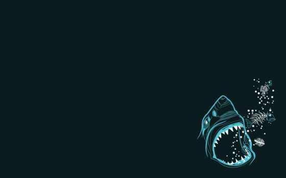 minimalist, минимализм, desktop, акула, galaxy, samsung,