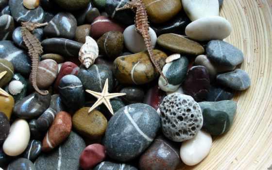 камни, макро, морские, большие, гладкие, широкоформатные, black,