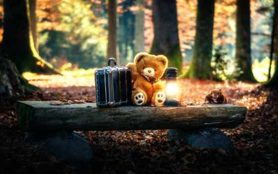 медведь, cute, teddy, одиночка, грустный, bears, toy, мишка, pictures,