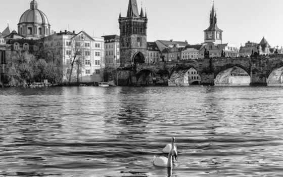 prague, чехия, города, most, strong, karlův, karluv, реки, вода, мосты,
