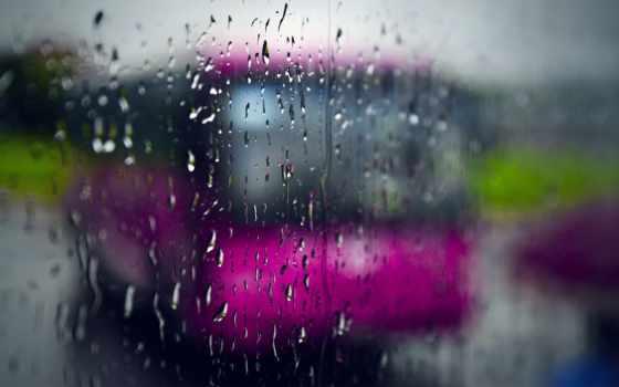 дождь, подборка, красивых